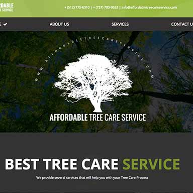 Affordable Tree Care Service